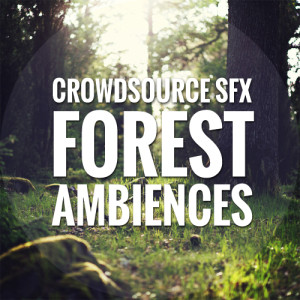 Forest Ambiences
